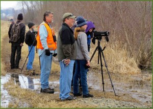 GMAS will have a booth and Gary Cowell will man a spotting scope at the Shreve Spring Migration Sensation.